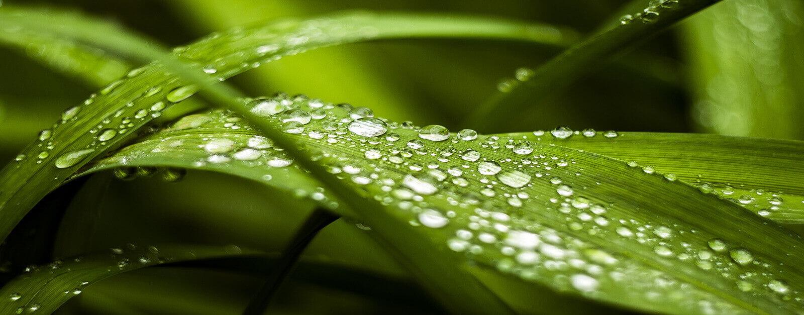 Nachhaltigkeit-Kommabei-Onlineshop-1