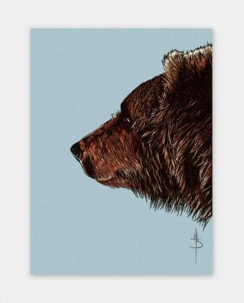 Postkarte Bruder Bär Kommabei